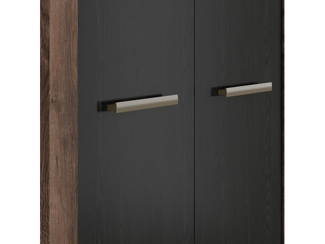 Wardrobe 2-door in decor monastery oak / black oak